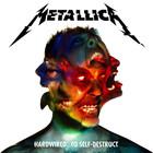 Cover von METALLICA - moth into flame